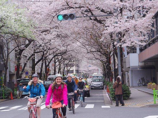 Excursion en vélo à Tokyo